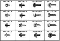 METRIC BODY BOLTS