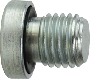 Hollow Hex Head Plug Metric Parallel