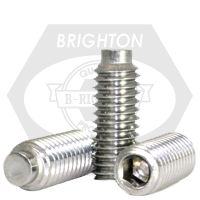 Stainless Steel Socket Set Screw 1/2 Dog
