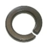 316 Stainless Lock Washers